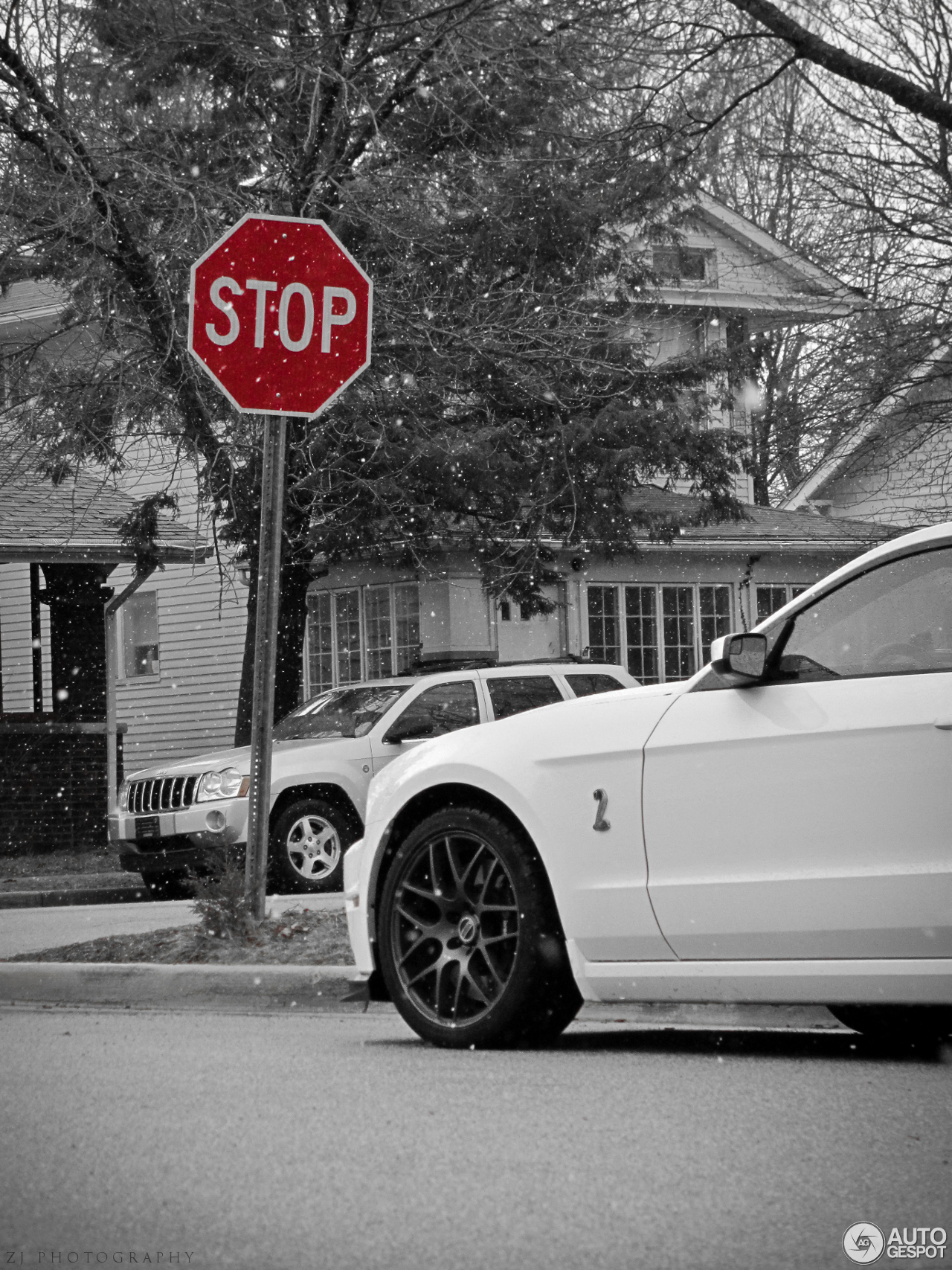 Ford Mustang 2013 Gt500 White Mustang Shelby Gt500 2013